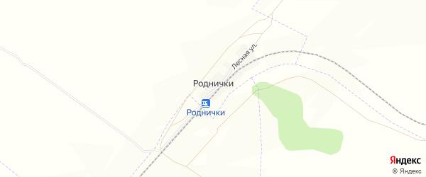 Карта поселка Роднички в Челябинской области с улицами и номерами домов