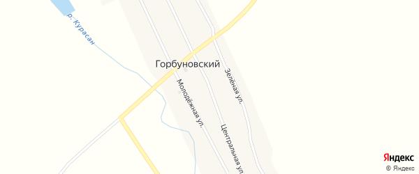 Центральная улица на карте Горбуновского поселка с номерами домов