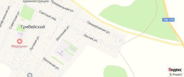 Лесная улица на карте Гумбейского поселка с номерами домов