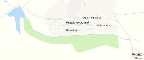 Лесная улица на карте Новоамурского поселка с номерами домов