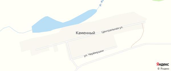 Центральная улица на карте Каменного поселка с номерами домов