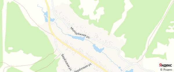 Молодежная улица на карте деревни Мулдакаево с номерами домов