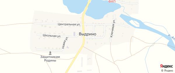 Луговой переулок на карте села Выдрино с номерами домов