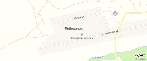 Заречная улица на карте Лебединого села с номерами домов