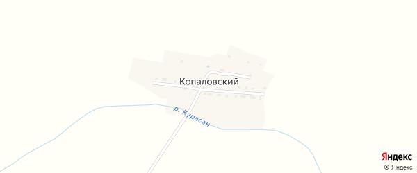 Речная улица на карте Копаловского поселка с номерами домов