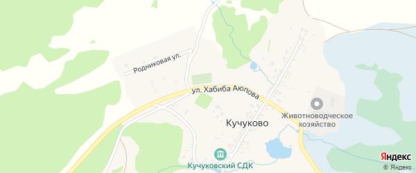 Улица Хабиба Аюпова на карте деревни Кучуково с номерами домов
