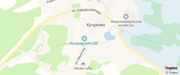 Улица Манатова на карте деревни Кучуково с номерами домов