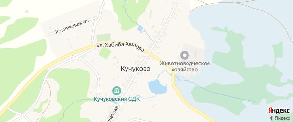 Родниковая улица на карте деревни Кучуково с номерами домов
