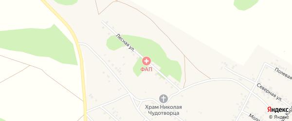 Лесная улица на карте Новокаолинового поселка с номерами домов