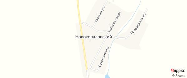 Приозерская улица на карте Новокопаловского поселка с номерами домов