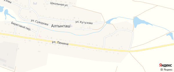 Улица Зои Космодемьянской на карте деревни Алтынташа с номерами домов