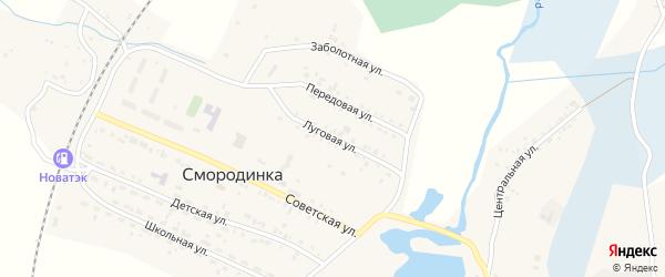 Луговая улица на карте села Смородинки с номерами домов