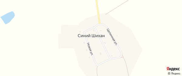 Центральная улица на карте села Синего Шихана с номерами домов