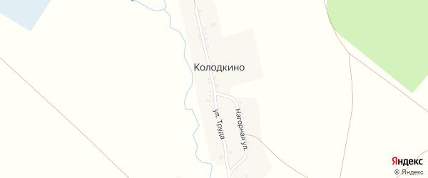 Улица Труда на карте деревни Колодкино с номерами домов