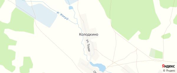 Карта деревни Колодкино в Челябинской области с улицами и номерами домов