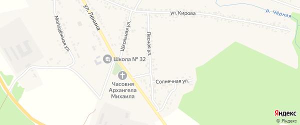 Лесная улица на карте Черновского села с номерами домов