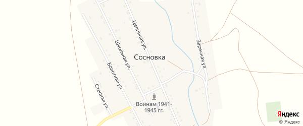 Целинная улица на карте села Сосновки с номерами домов