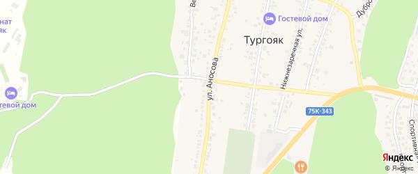 Улица Аносова на карте поселка Тургояка с номерами домов