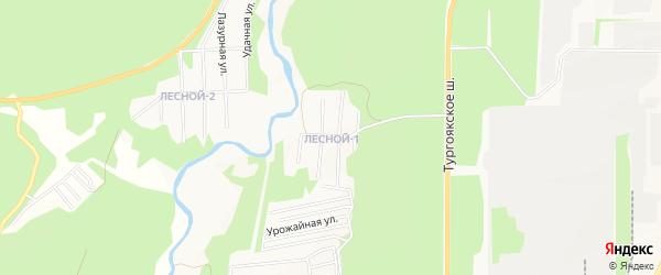 Карта Лесного поселка города Миасса в Челябинской области с улицами и номерами домов