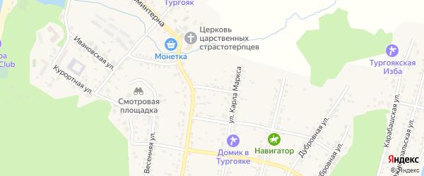 Переулок Аносова на карте поселка Тургояка с номерами домов
