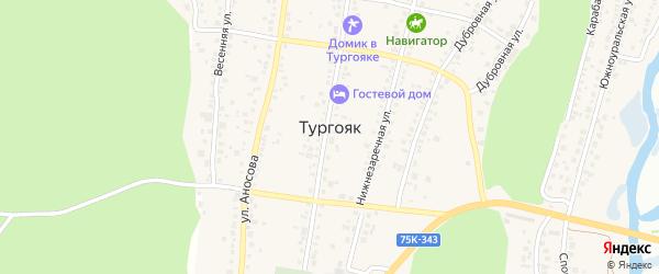 Октябрьская улица на карте поселка Тургояка с номерами домов
