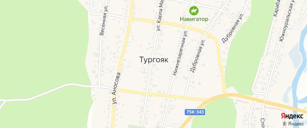 Территория НП пансионат Тургояк на карте поселка Тургояка с номерами домов