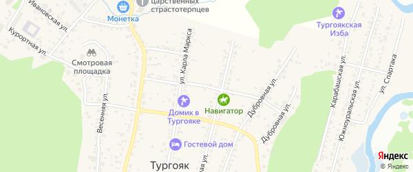 Аносова 2-й переулок на карте поселка Тургояка с номерами домов