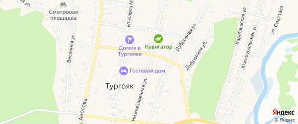 Заречная улица на карте поселка Тургояка с номерами домов