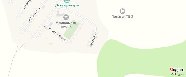 Лесная улица на карте села Аминево с номерами домов