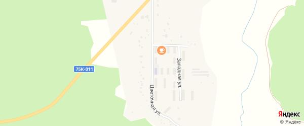 Цветочная улица на карте поселка Строителея с номерами домов