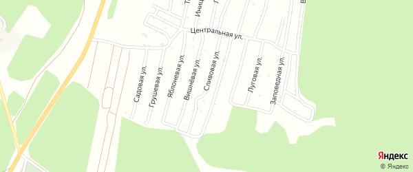 Улица Сливовая (СНТ Северный-2) на карте Миасса с номерами домов