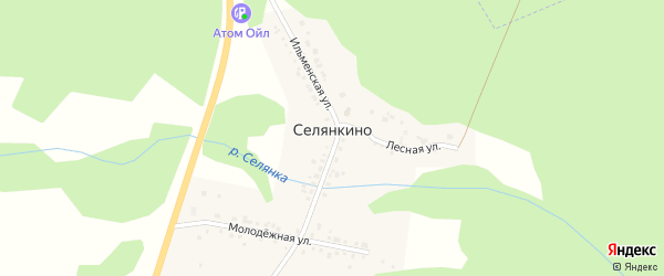 Улица Ленина на карте поселка Селянкино с номерами домов