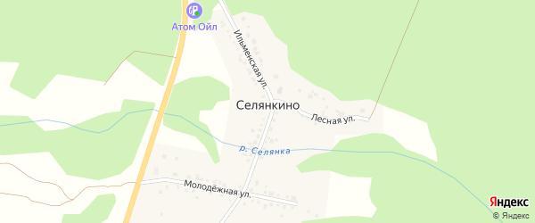 Земляничный переулок на карте поселка Селянкино с номерами домов