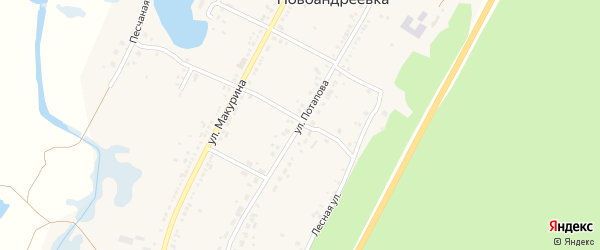Улица Потапова на карте села Новоандреевки с номерами домов