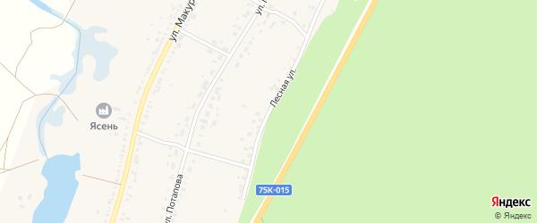 Лесная улица на карте села Новоандреевки с номерами домов