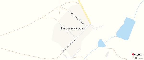 Шоссейная улица на карте Новотоминского поселка с номерами домов