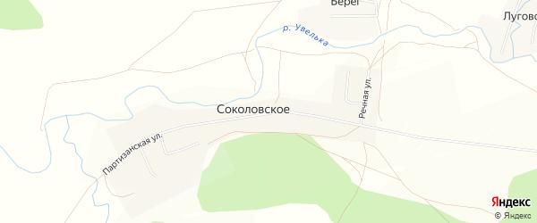 Карта Соколовского села в Челябинской области с улицами и номерами домов
