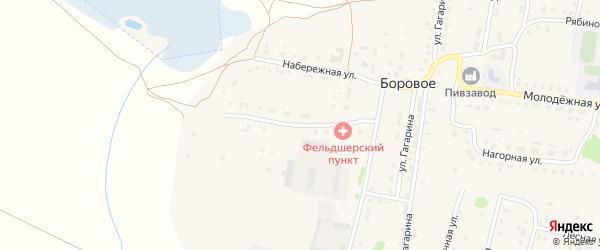 Южная Набережная улица на карте деревни Борового с номерами домов