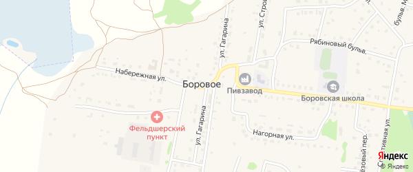 Улица Гагарина на карте деревни Борового с номерами домов