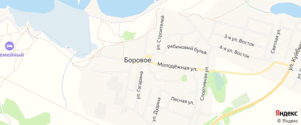 Карта деревни Борового в Челябинской области с улицами и номерами домов