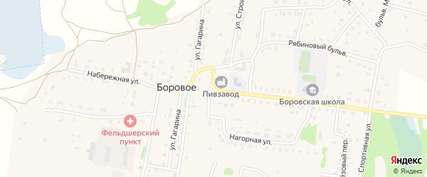 Школьная улица на карте деревни Борового с номерами домов