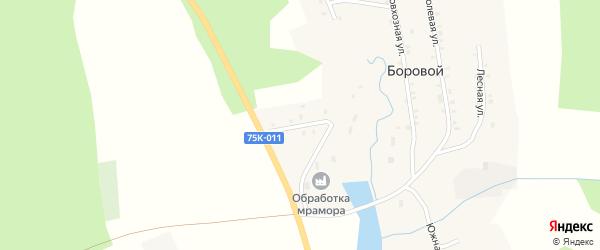 Береговая улица на карте Борового поселка с номерами домов