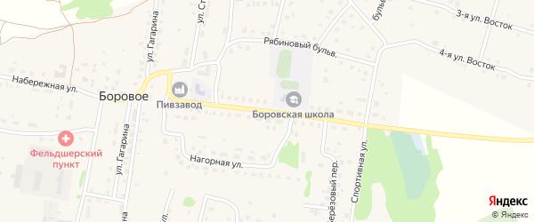 Молодежная улица на карте деревни Борового с номерами домов