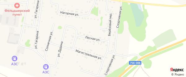 Лесная улица на карте деревни Борового с номерами домов
