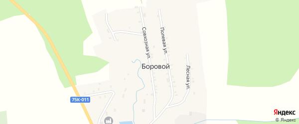 Совхозная улица на карте Борового поселка с номерами домов
