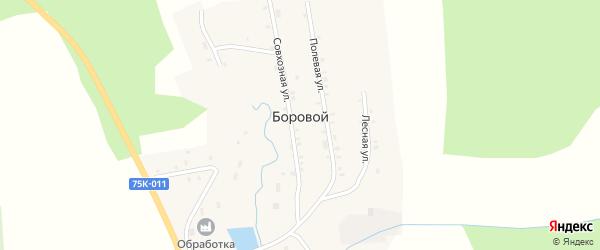 Полевая улица на карте Борового поселка с номерами домов