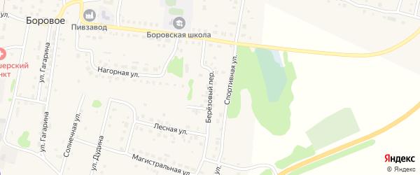 Березовый переулок на карте деревни Борового с номерами домов