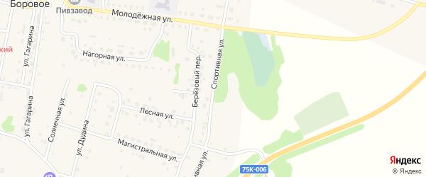 Спортивная улица на карте деревни Борового с номерами домов