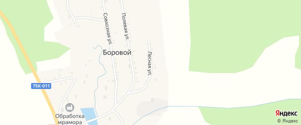 Лесная улица на карте Борового поселка с номерами домов