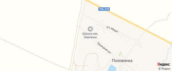 Лесная улица на карте деревни Половинки с номерами домов